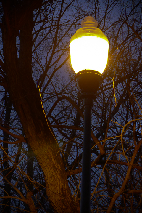 Nightfall With Streetlamp, Hagerstown, Maryland, Dece,ber 2012