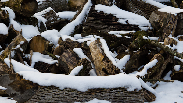 Woodpile, Pangborn Park, Maintenance Area, Hagerstown, Maryland,