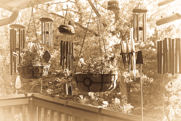 Balcony Garden in Sepia, 2007