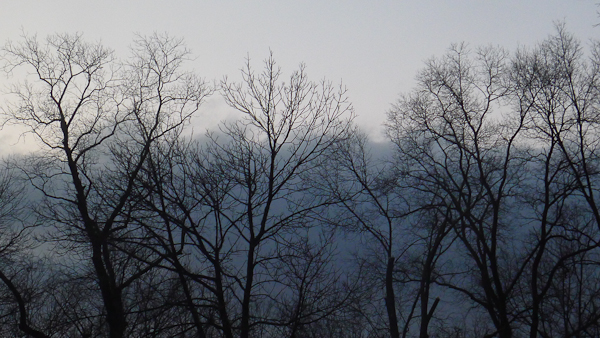 Mountain Fog, Hagerstown, Maryland, February 9, 2013