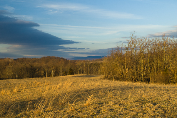 Hillside at Sunset, Antietam Battlefield, Sharpsburg, Maryland,