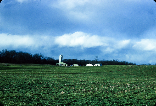 Farm, Leitersburg Pike North of Hagerstown, Maryland, March 12,