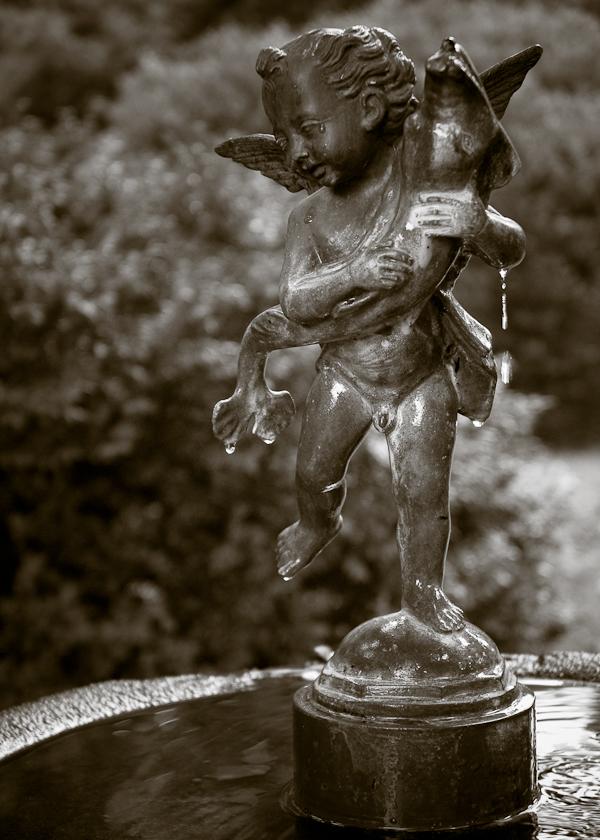 Fountain, Tudor Place, Georgetown, Washington, D.C., July 2008