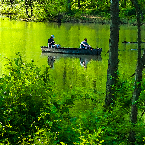 Fishing, C&O Canal, Fort Frederick State Park, Big Pool, Marylan
