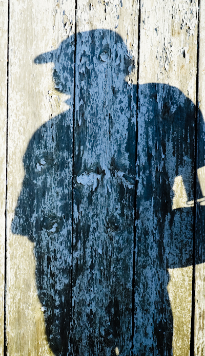 Portrait of the Arist as an Old Board, Mumma Farm Outbuilding, A