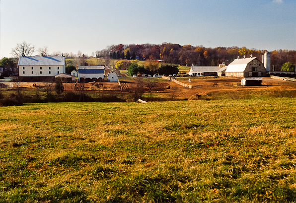 Bascule Farm, Poolesville, Maryland, Autumn, 2001