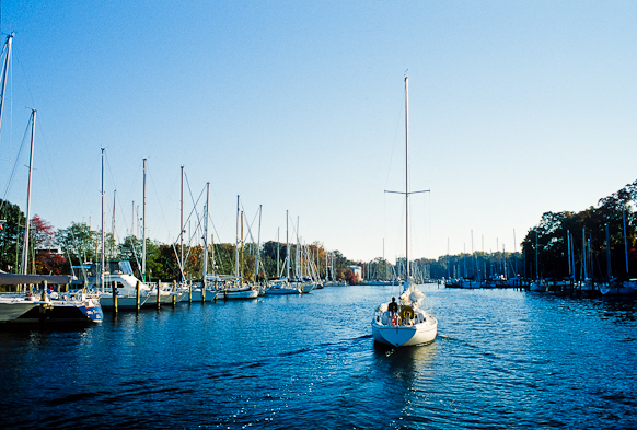 Homeward Bound, Sailing, Back Creek, Chesapeake Bay, Maryland, O
