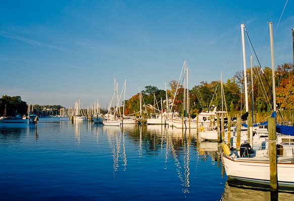 Back Creek, Chesapeake Bay, Maryland, October 30, 1999