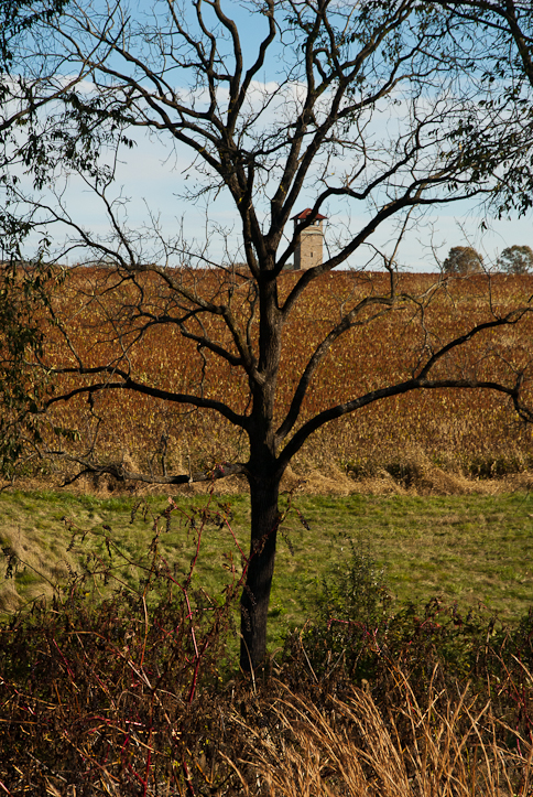 Tower, Bloody Lane, Obstructed, Autumn, Antietam National Battle