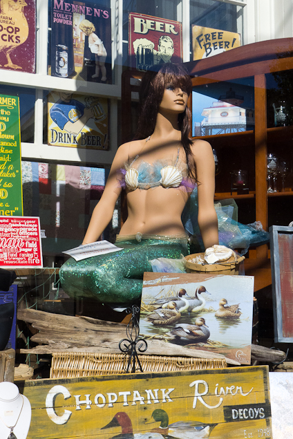 Mermaid for Sale, Shop Window, Cambridge, Maryland, October 26,