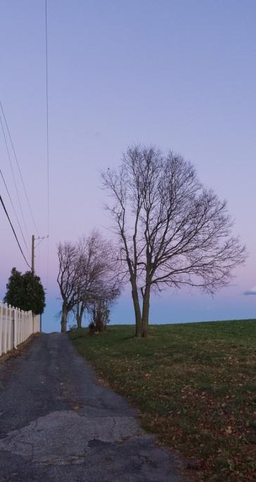Road Snaps, South-Central Pennsylvania, November 18, 2013