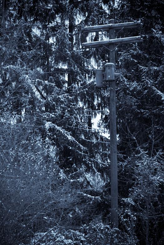 Cool Tint, Hunter Hill, December 16, 2008
